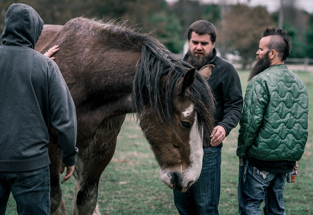 Men with Horse